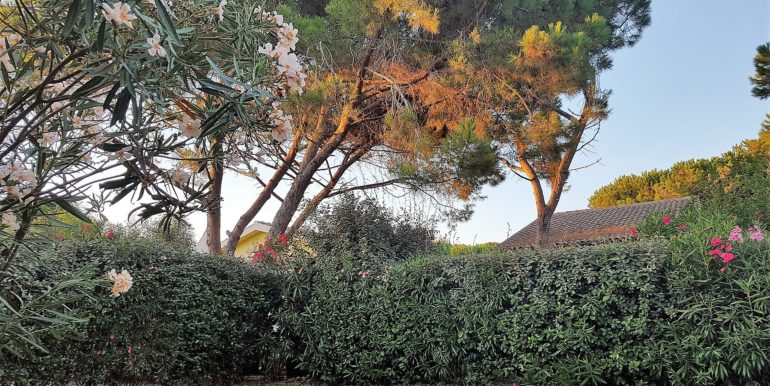 foto giardino villetta valledoria -01