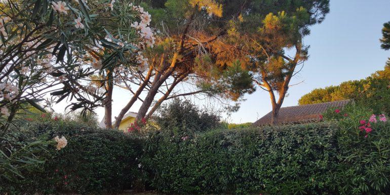 foto giardino villetta valledoria -03